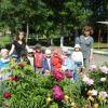 Детские сады Алексина