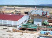 Банк «Траст» вложил 1,5 млрд. руб. в лесоперерабатывающий комплекс
