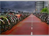 В Великих Луках создадут Центр подготовки велосипедистов и построят бассейн