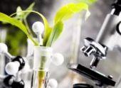 Услуги экологической лаборатории: описание