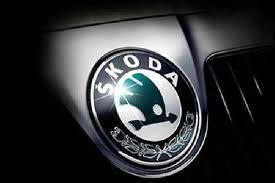 Официальный представитель Skoda