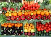 В Калининграде состоялось открытие новой агрофабрики
