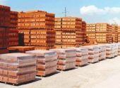 В Тамбовском регионе появиться масштабный кирпичный завод