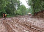 Строительство трассы М-11 ставит под угрозу природную среда и культурное наследие новгородского края