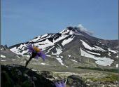 Завершилась международная научно-исследовательская экспедиция на Камчатке
