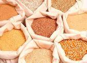 Особенности продажи зерновых культур